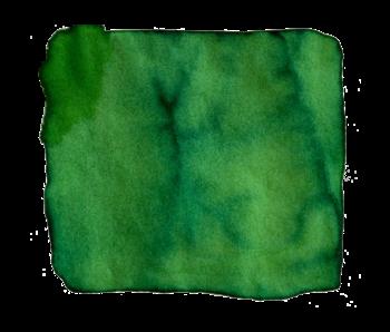 Robert Oster Ink 50ml Green Lime