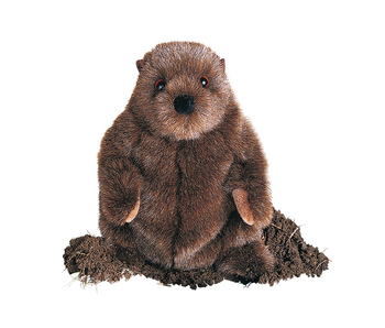 DOUGLAS CUDDLE TOY PLUSH CHUCKWOOD GROUND HOG