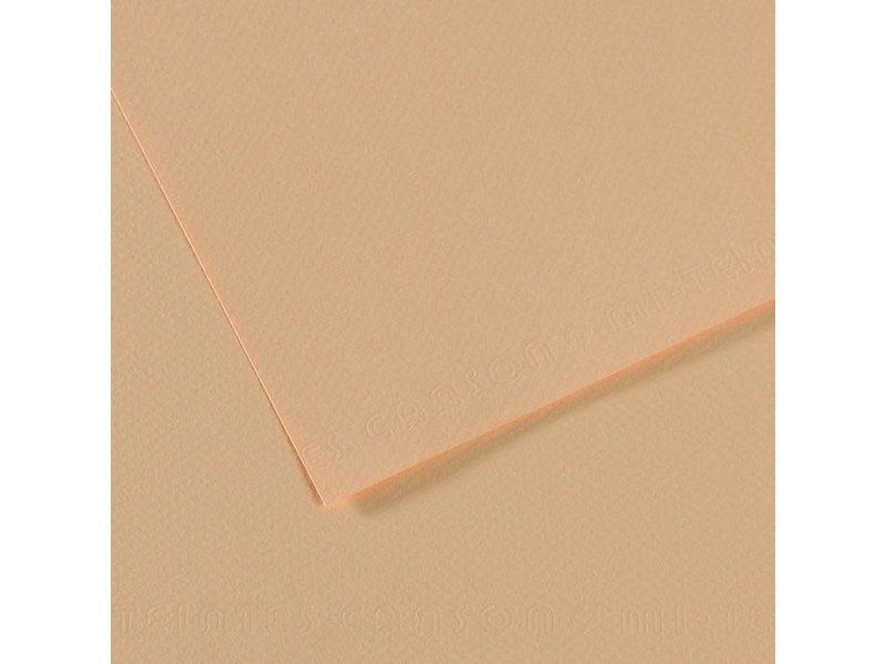CANSON MI-TEINTES 19x25 HONEYSUCKLE