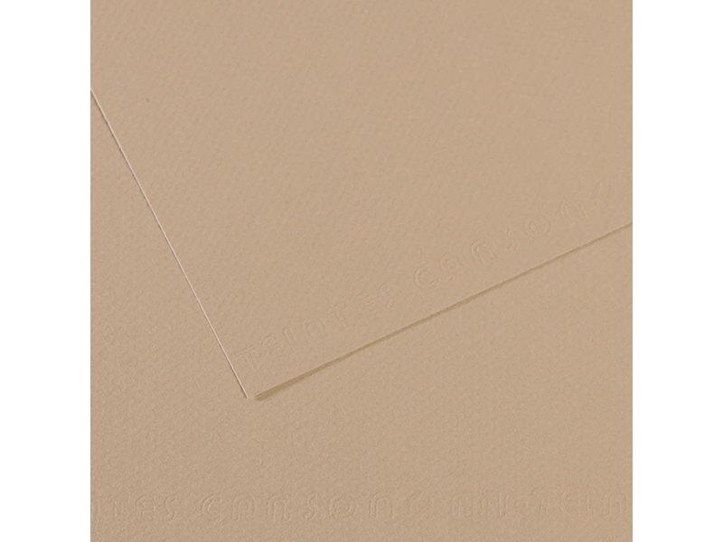 CANSON MI-TEINTES 19x25 PEARL