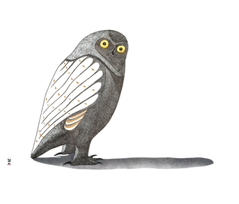 POMEGRANATE BOXED NOTECARDS OWLS INUIT ART