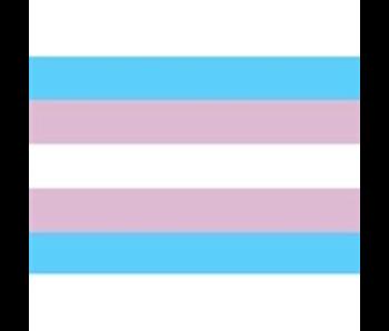 Transgender Flag Fridge Magnet