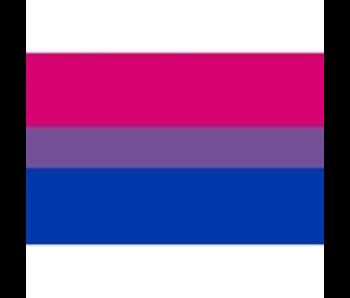 Bisexual Flag Fridge Magnet