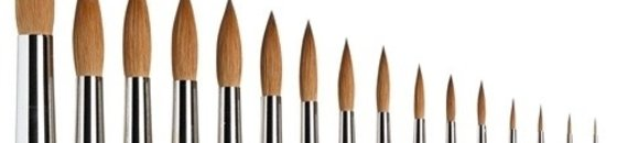 Winsor Newton Series 7 Brushes