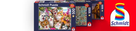 Schmidt Puzzles