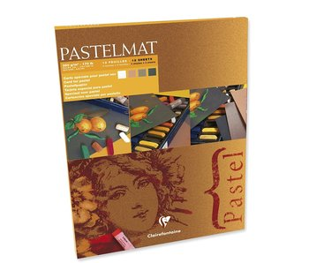 CLAIREFONTAINE PASTELMAT 4 SHADES WHITE, 18CMX24CM NATURAL SIENNA, BROWN, ANTHRACITE