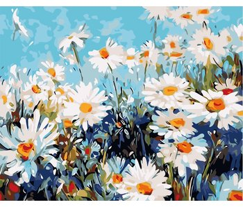 Field of Daisies Intermediate Adult Paint by Numbers Kit