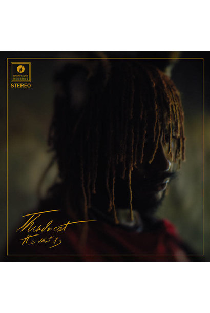 Thundercat • It Is What It Is