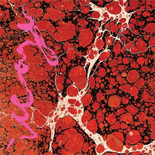 Iceage • Beyondless-1