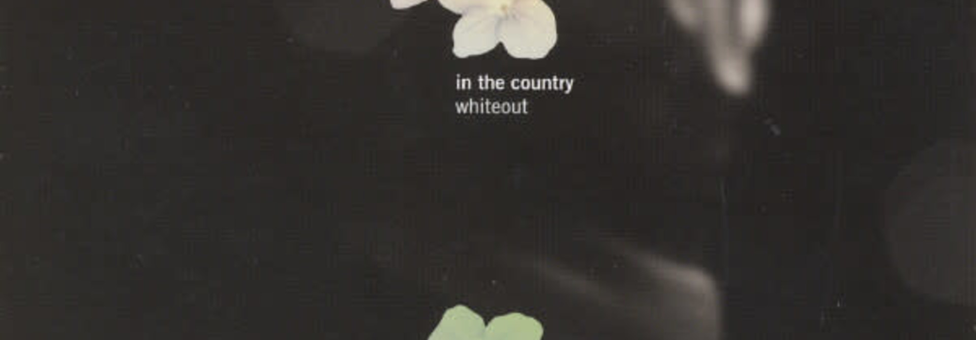 In The Country • Whiteout