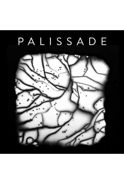 Palissade • s/t