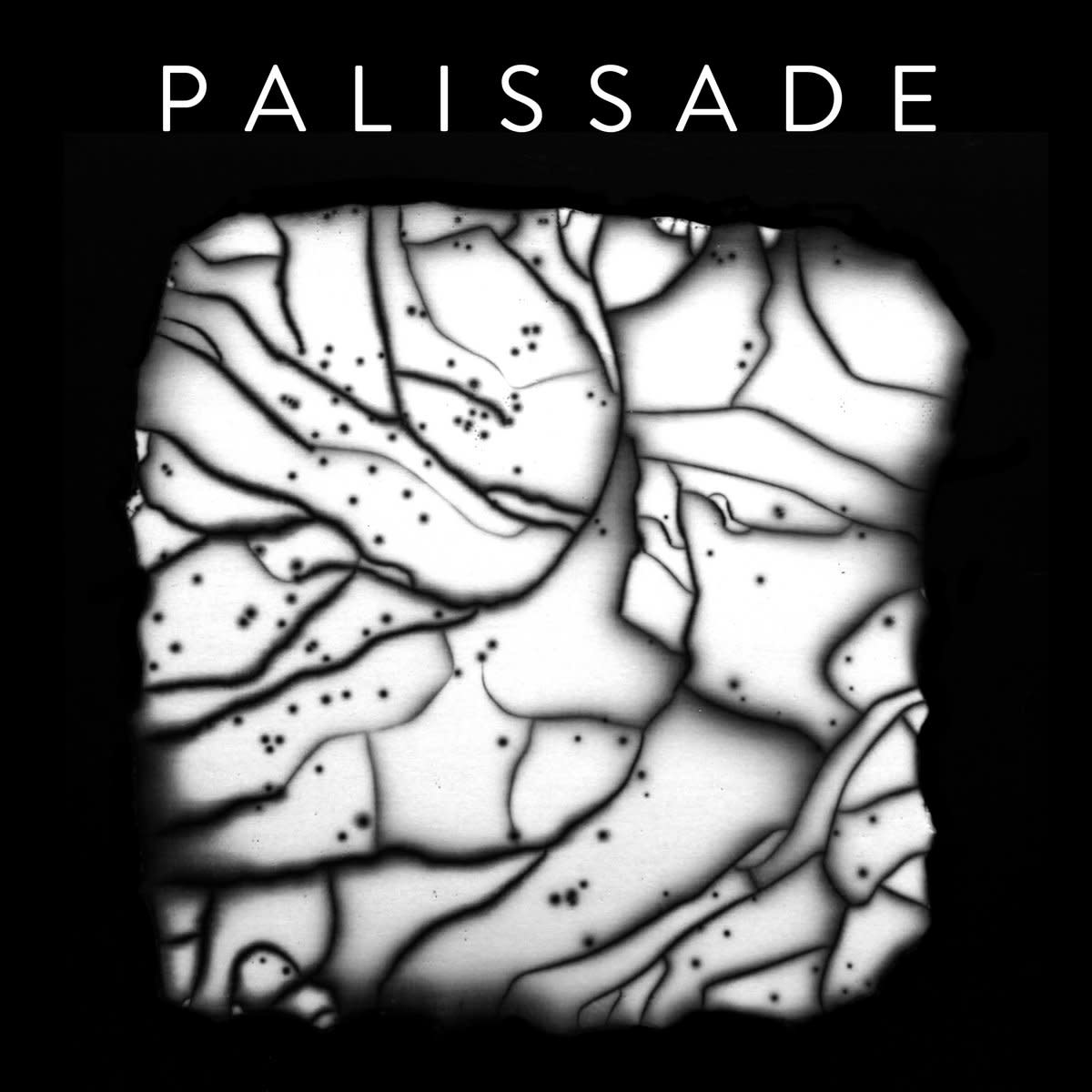 Palissade • s/t-1