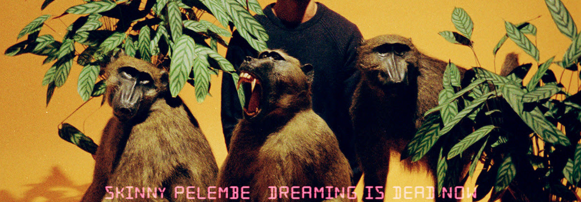 Skinny Pelembre • Dreaming Is Dead Now