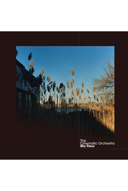 The Cinematic Orchestra • Ma Fleur