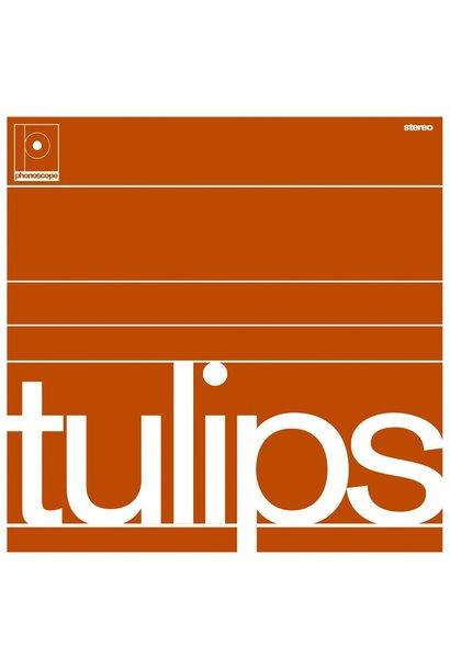 Maston • Tulips