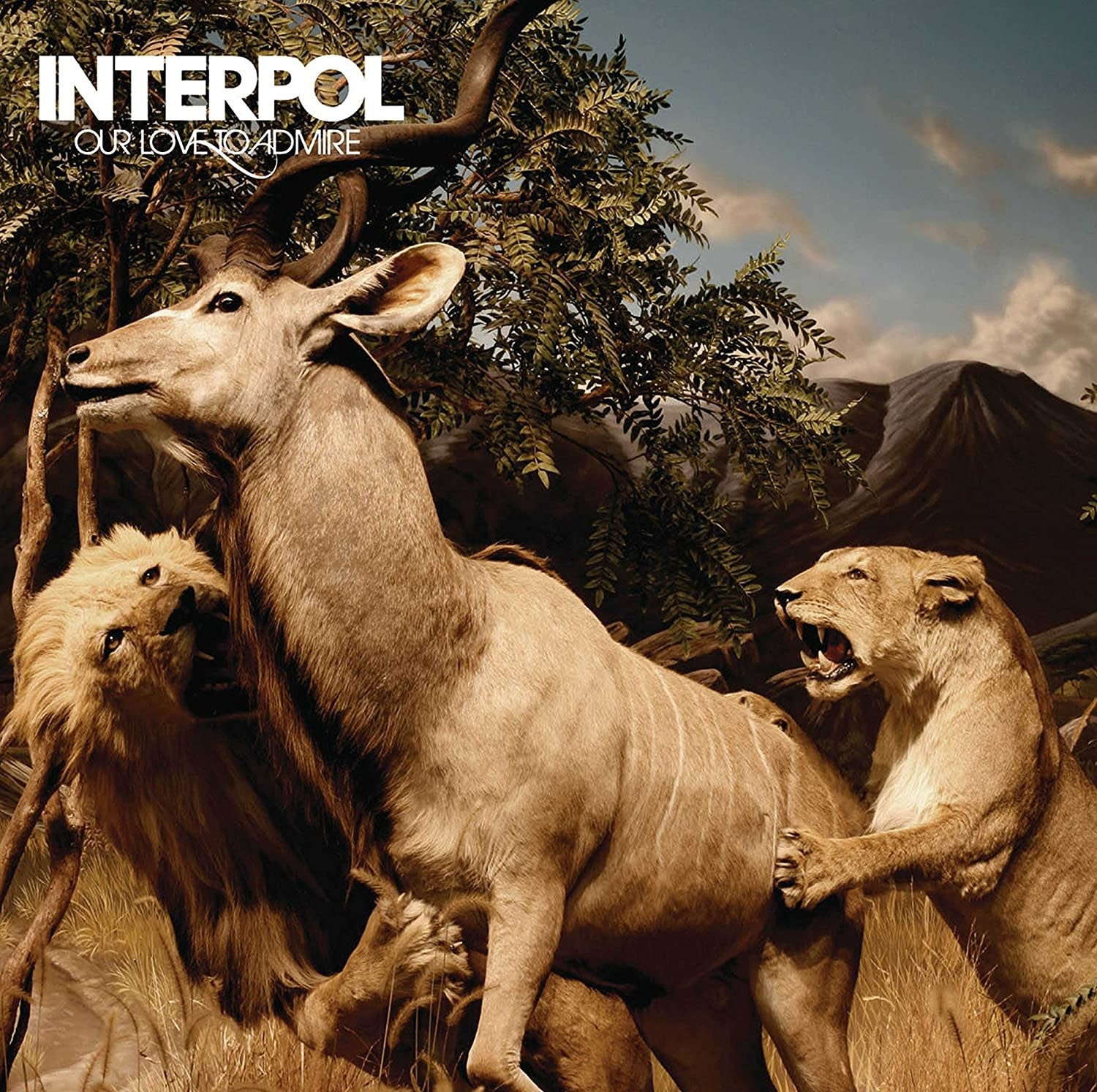Interpol • Our Love to Admire (Édition couleur limitée)-1
