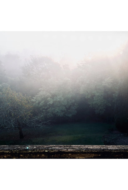 Robin Schlochtermeier • Spectral