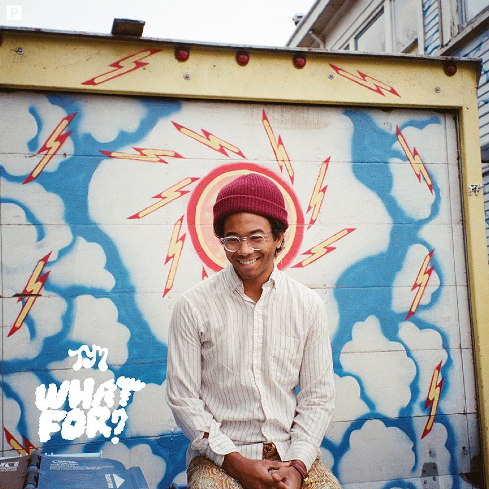 Toro y Moi • What For?-1