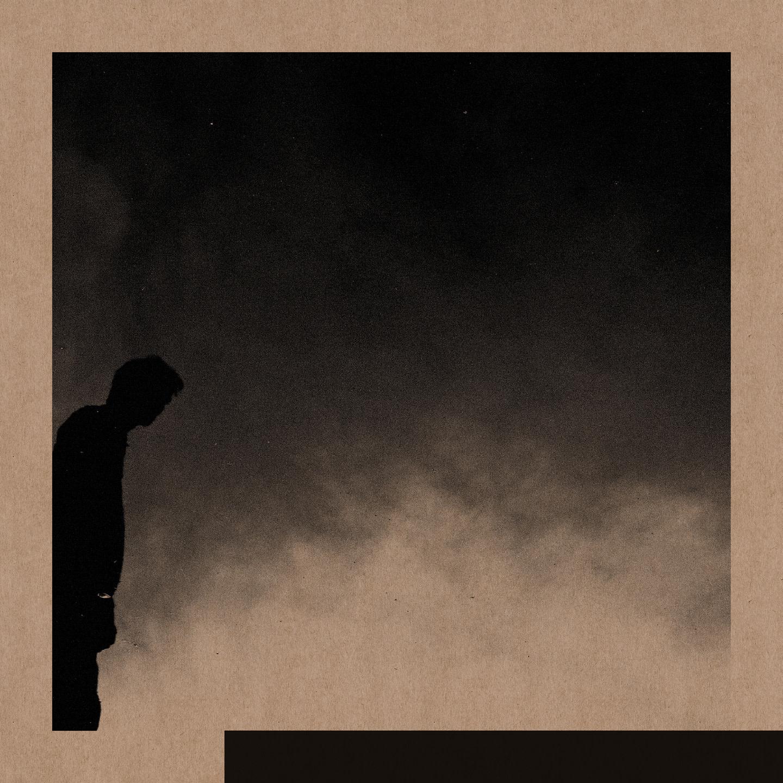 David Allred • Felt The Transition-1