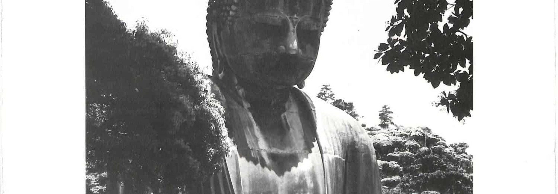 Victor Cavini • Japan