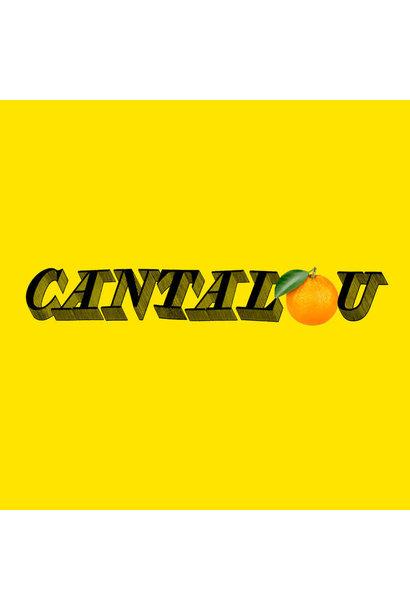 Thierry Larose • Cantalou