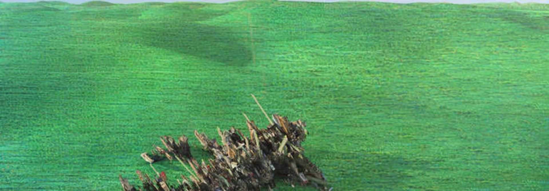 Squid • Bright Green field (2LP)