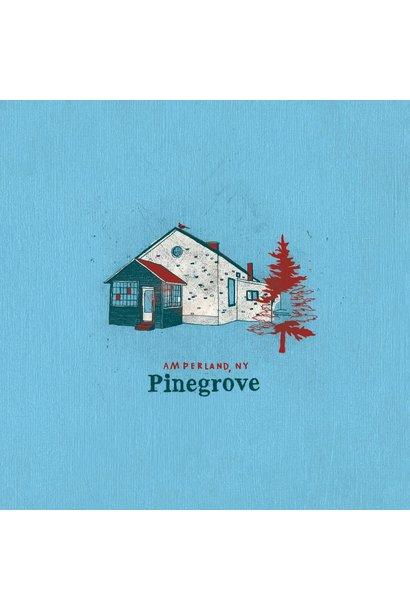 Pinegrove • Amperland, NY (2LP)