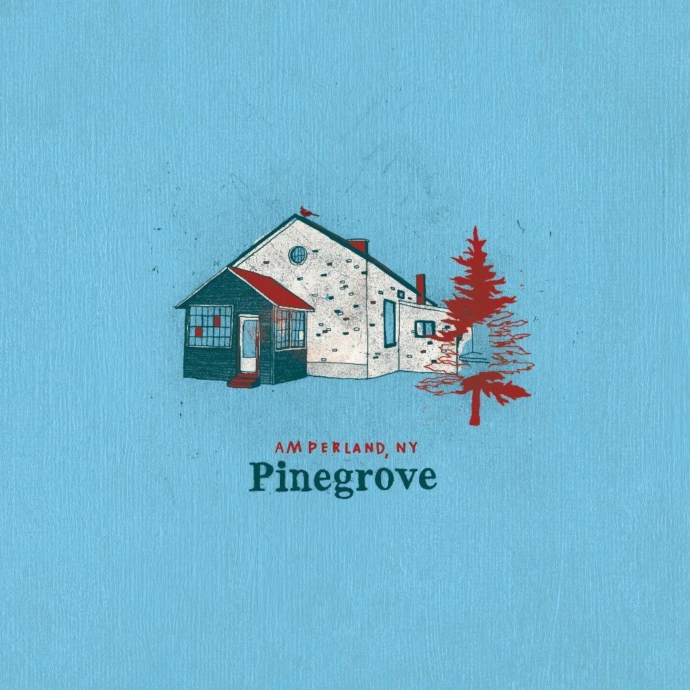 Pinegrove • Amperland, NY (2LP)-1
