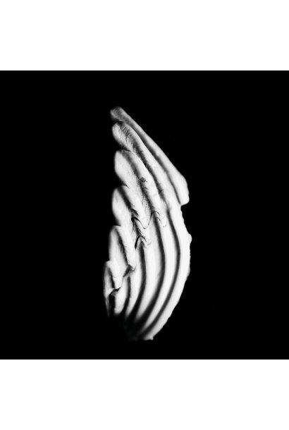 KMRU • Logue (vinyle clear)