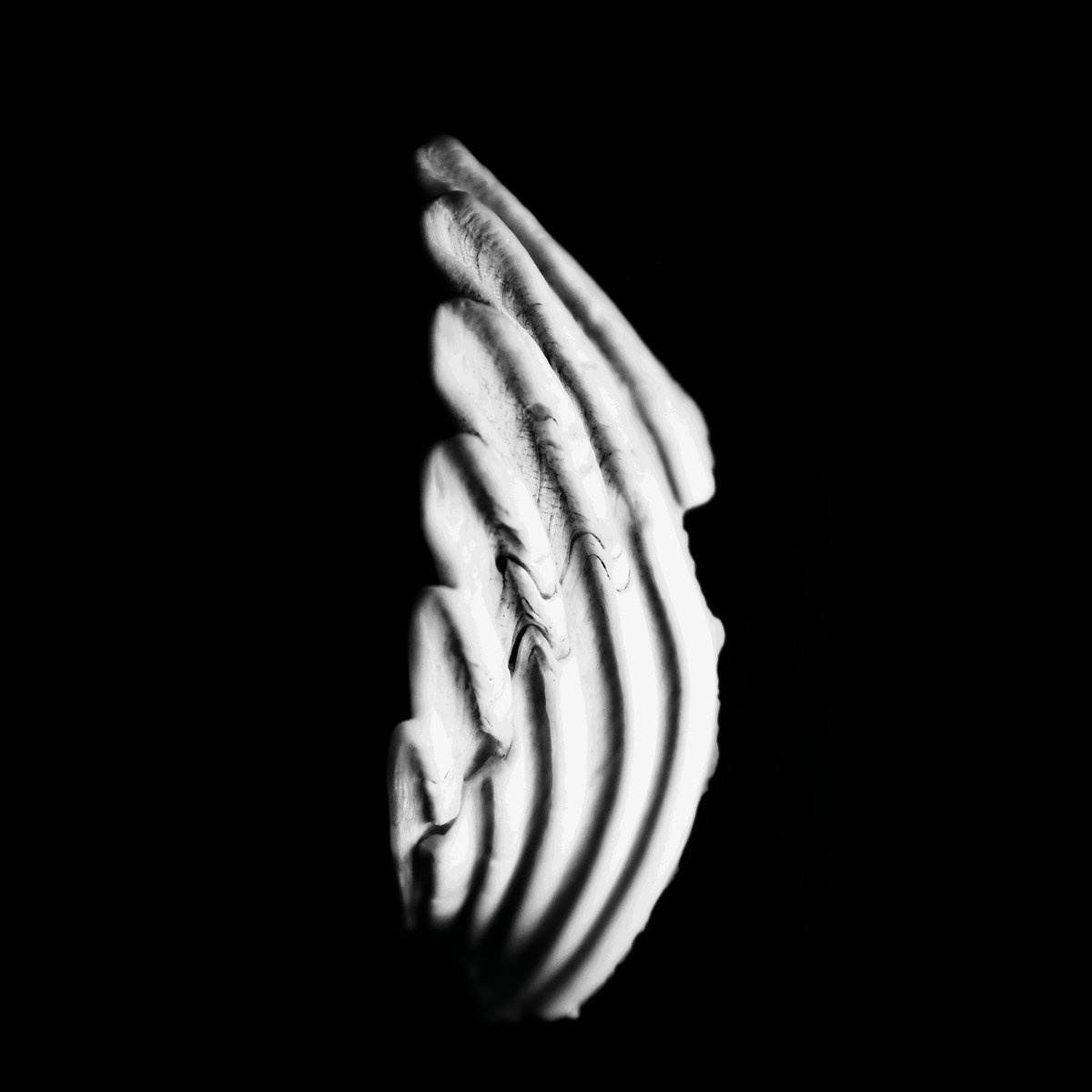 KMRU • Logue (vinyle clear)-1