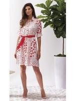 Alison Sheri Red Polka Dot Dress With Slip