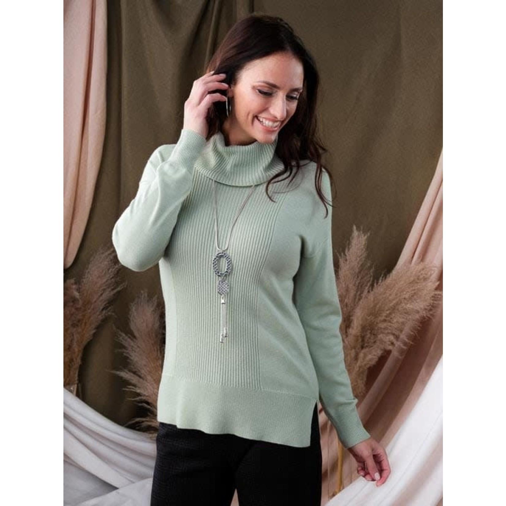Alison Sheri Turtleneck Sweater Sage