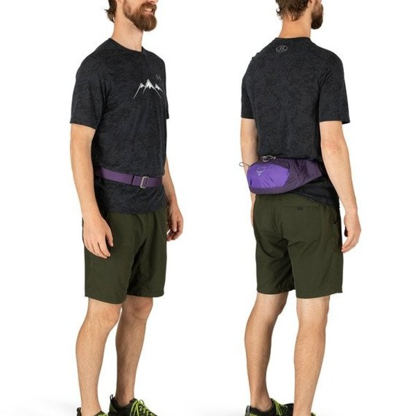 OSPREY Daylite Waist Dream Purple O/S