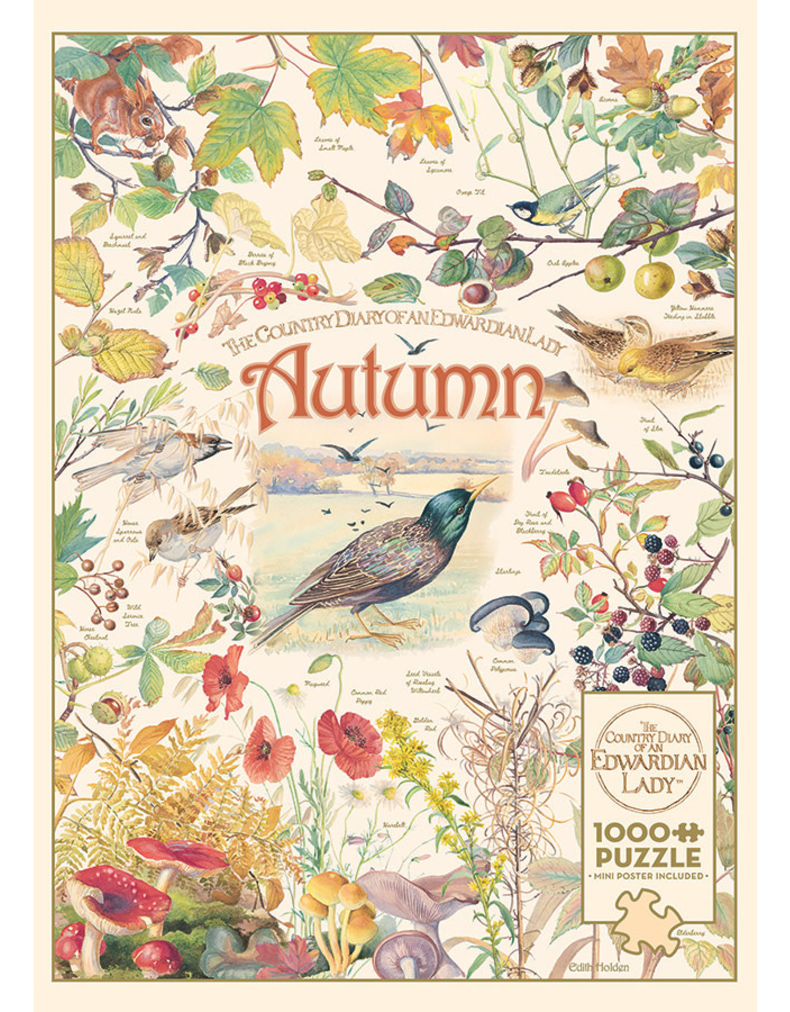 Cobble Hill Puzzles Country Diary: Autumn 1000pc