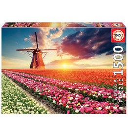 Educa Tulips Landscape 1500pc