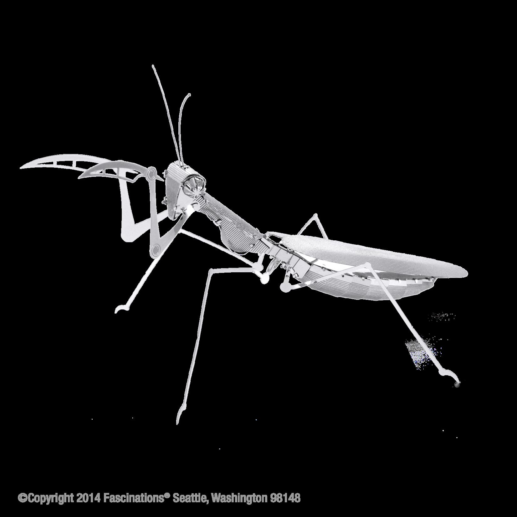 Fascinations Praying Mantis