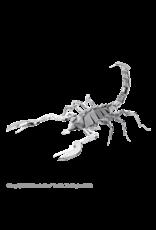 Facinations Scorpion