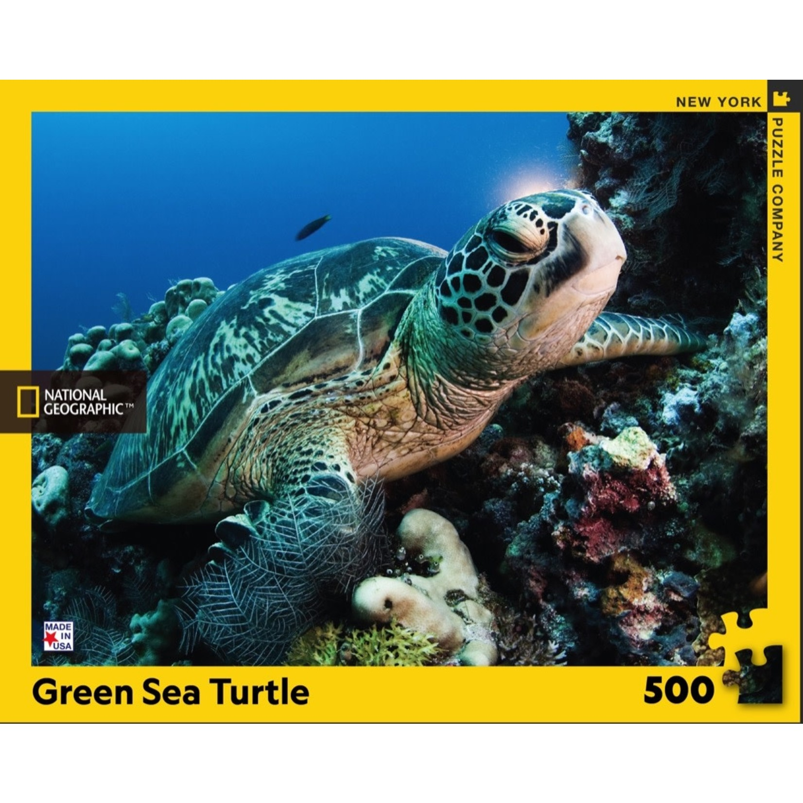 New York Puzzle Co Green Sea Turtle 500pc