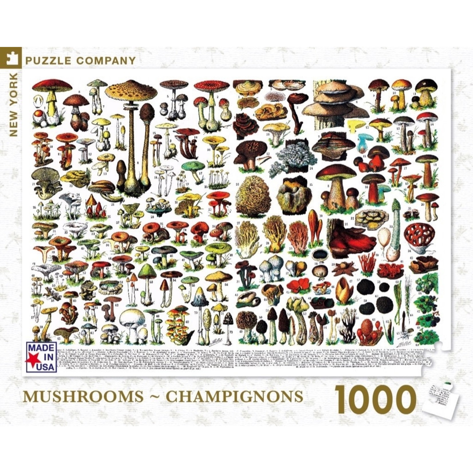 New York Puzzle Co Mushrooms 1000pc