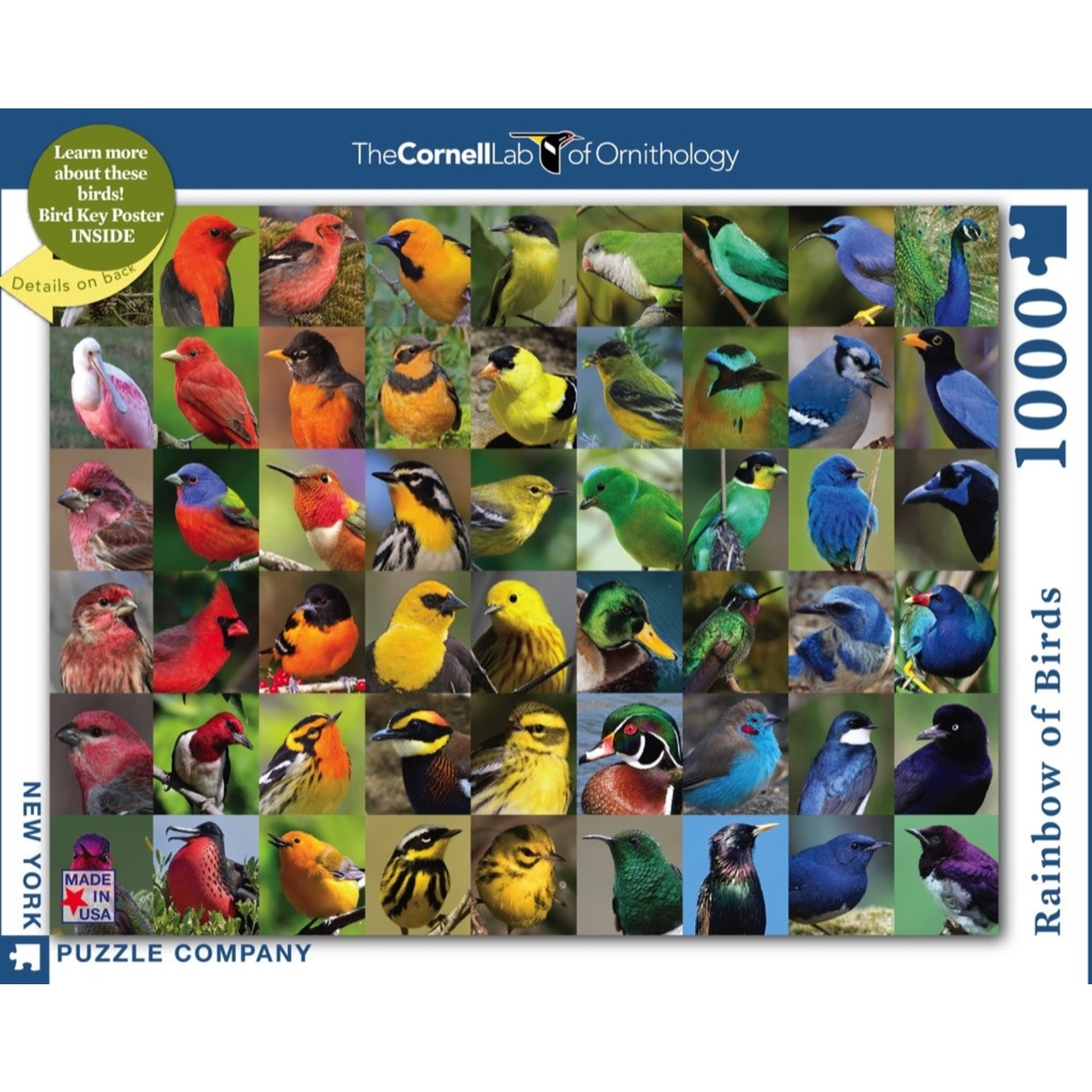 New York Puzzle Co Rainbow of Birds 1000pc