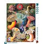 New York Puzzle Co Sea Anemones 1000pc