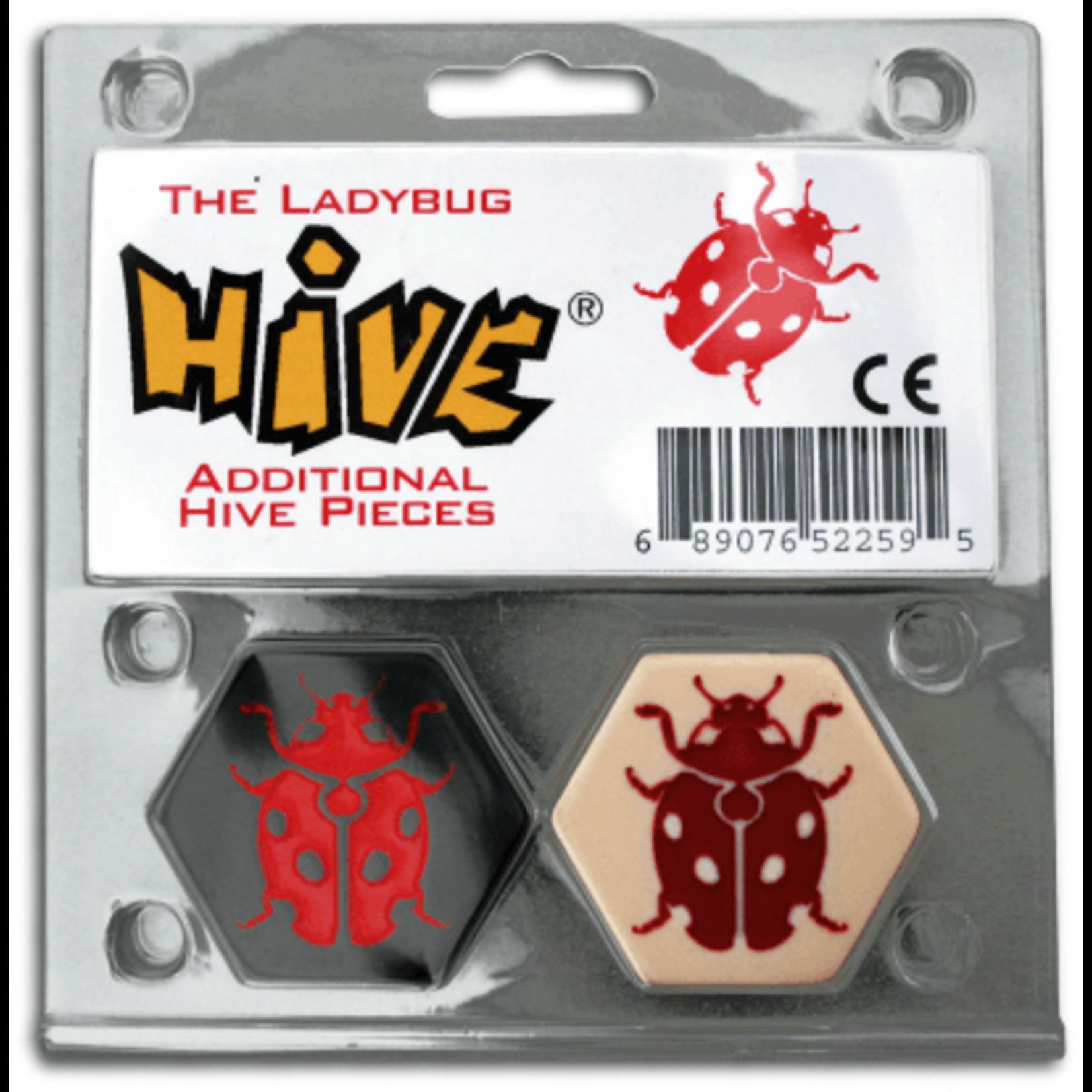 Hive Ladybug Exp