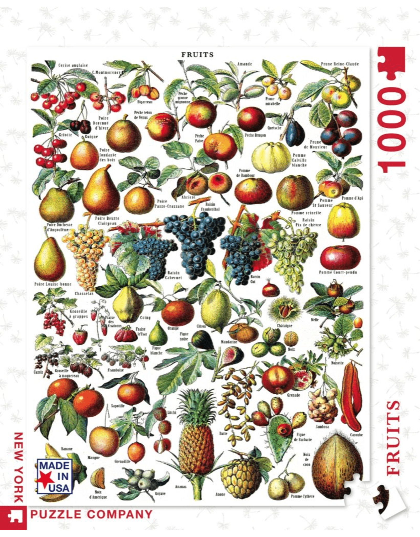 New York Puzzle Co Fruits Pzl 1000