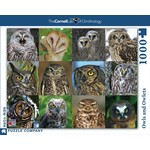 New York Puzzle Co Owls and Owlets 1000pc