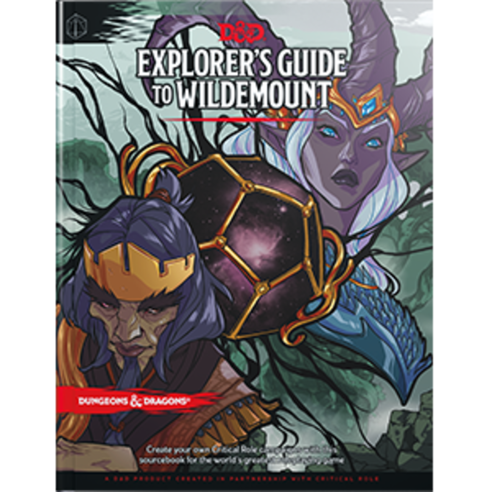 D&D: Explorer's Guide to Wildmount