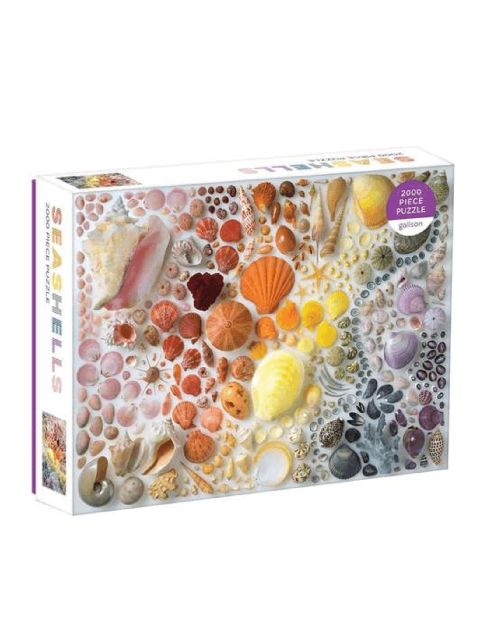 Galison Rainbow Seashells 2000pc