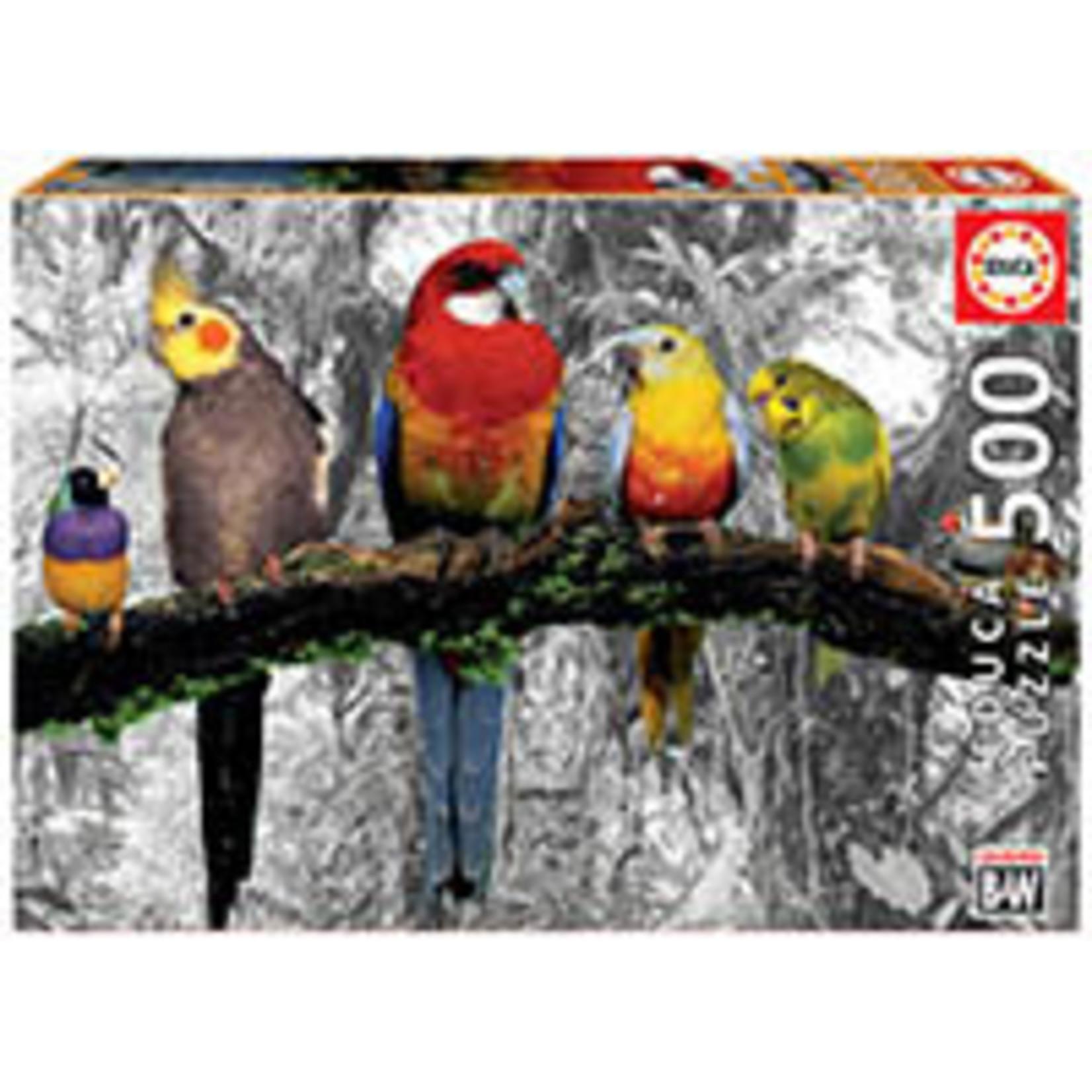 Educa Puzzles Birds on the Jungle 500pc