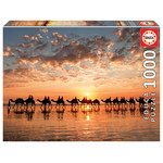 Educa Puzzles Golden Sunset on Cable Beach 1000pc
