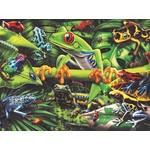 Ravensburger Amazing Amphibians 35pc