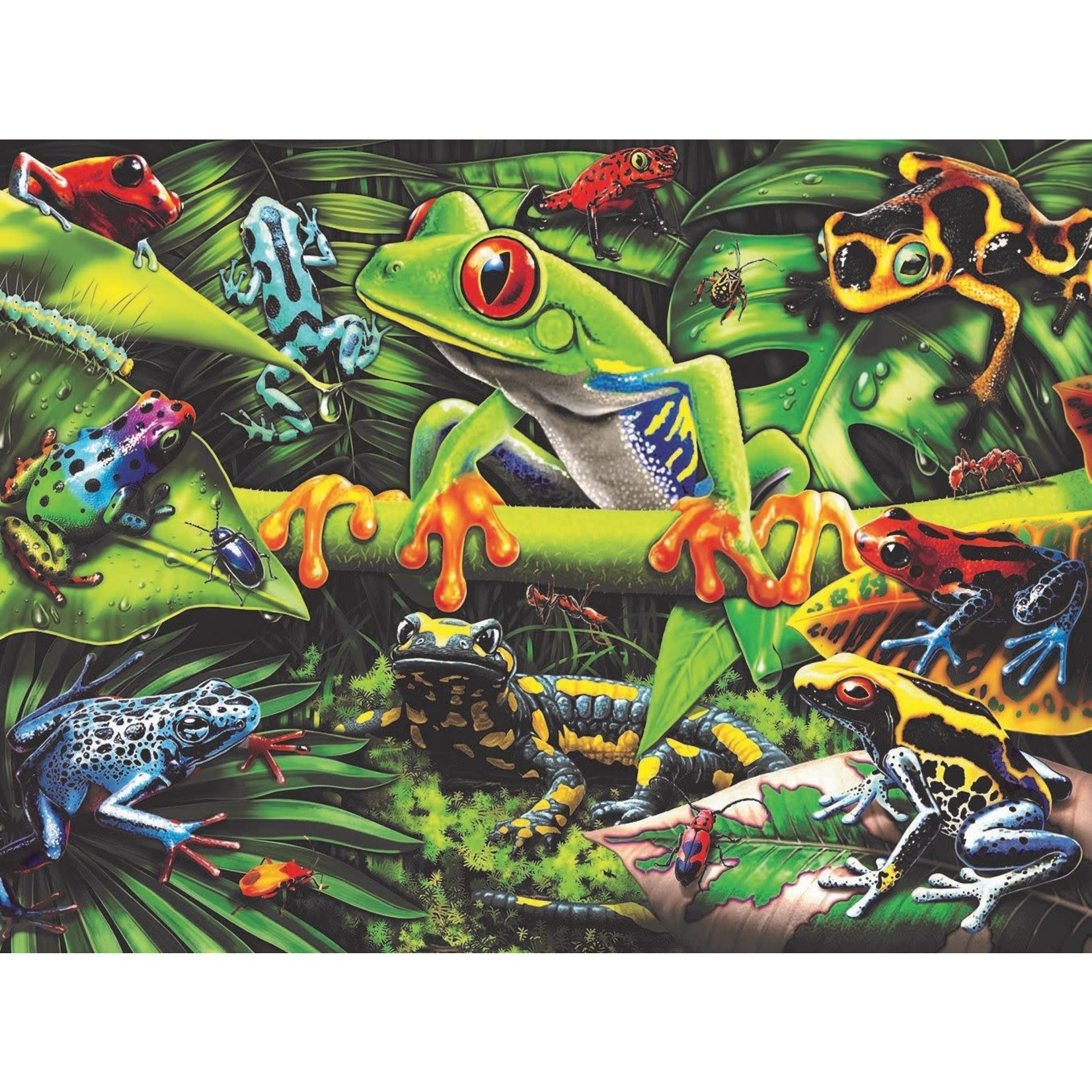 Ravensburger Amazing Amphibians 35pc